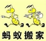 蚂蚁搬家物流(上海)有限公司