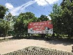 上海榛果犬业