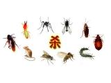 成都绿卫有害生物防治有限公司