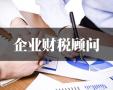 武汉投标审计报告