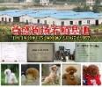 广东尊盛繁殖基地
