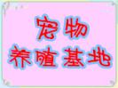 中国宠物养殖基地