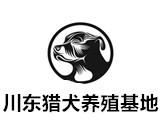 川东猎犬养殖基地