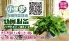 哈尔滨宏轩花卉租赁有限公司