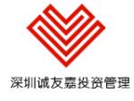 深圳市诚友嘉投资管理有限公司