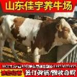 山东佳宇牧业集团重点良种繁育基地