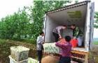三亚食材配送|三亚食品配送
