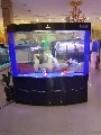 海鑫水族 鱼缸清洗护理