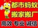 广州蚂蚁搬家公司