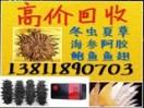 北京盛源冬虫夏草回收