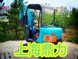 上海鼎力微型挖机租赁公司