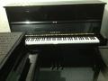 滨州品牌二手钢琴价格低 型号全