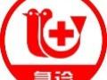 深圳南山24小时宠物医院可上门