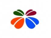 深圳绿植租赁-深圳花卉盆栽出租销售-深圳开业花篮配送