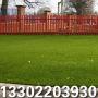 标准足球场人造草皮_标准足球场人造草皮价格_标准足球场人造草皮图片_列表网