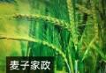 上海麦子家庭服务有限公司