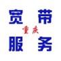 重庆联通限流量卡29元一月送1000分钟通话