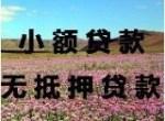 世行汇通投资担保(北京)有限公司