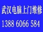 武汉明飞电脑维修