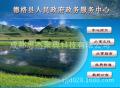 新津武阳社区服务中心分诊排队管理系统已启用