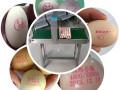 上海鸡蛋喷码机多少钱,小型整盘鸡蛋喷码机