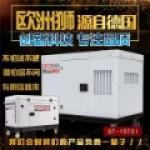 欧洲狮动力发电机