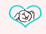 上海喜喜宠物店
