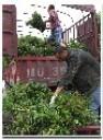 成都綠籬園藝