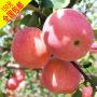 陕西红富士苹果价格_陕西红富士苹果价格价格_陕西红富士苹果价格图片_列表网