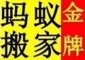 上海蚂蚁搬场服务有限公司