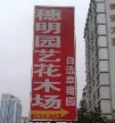 深圳市光明新区公明穗明园艺花木场