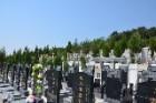 广州公墓 广州墓园 广州殡仪馆 广州丧葬一条龙