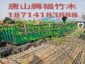 唐山腾福竹木有限公司
