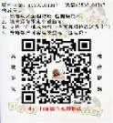广东威乐犬舍