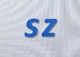 苏正投资管理有限公司