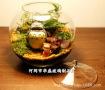 创意玻璃公杯_创意玻璃公杯价格_创意玻璃公杯图片_列表网