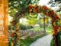 南京草坪婚礼价格 草坪婚礼策划流程 草坪婚礼布置场地