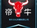 上海摄影摄像 大合影 宣传片