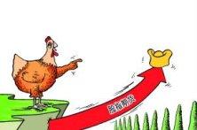 股市情绪监控(