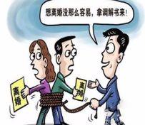 重庆婚姻家庭纠纷、遗产纠纷