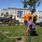 广州清洗化粪池