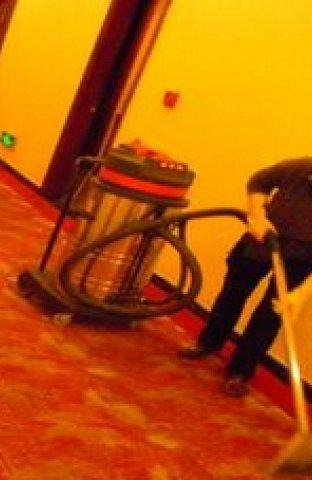 专业服务,地毯清洗!