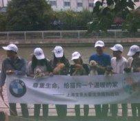上海宠物救助中心