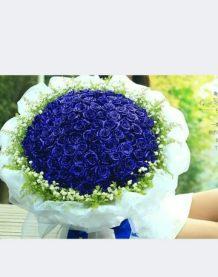 高档蓝色妖姬
