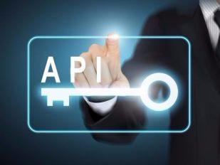 API接口
