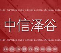 天津市河北区公司注册,中信泽