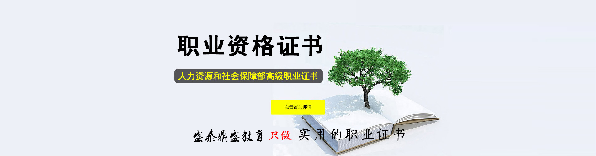 石家庄网教报名自考大专本科学历提升stds.com.cn