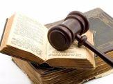 犯盗伐林木罪,判处有期徒刑一年