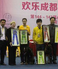 狗狗训练正向训练,翔鹏国际宠物警犬训练学校