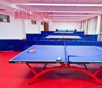 乒乓球地板 乒乓球地胶 乒乓